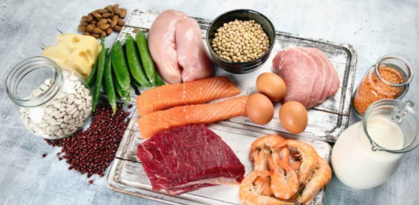 Differences between proteins of animal and vegetable origin