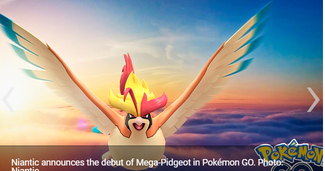 Pokémon GO Niantic confirms the arrival of Mega-Pidgeot and so you can have it
