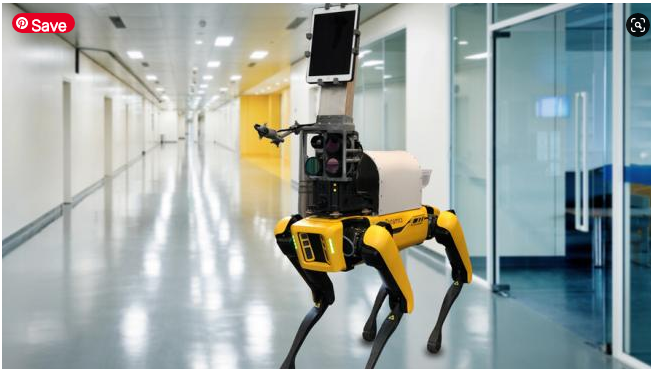 They modify the famous Spot robot dog so that it can check patients, avoiding contact with health workers