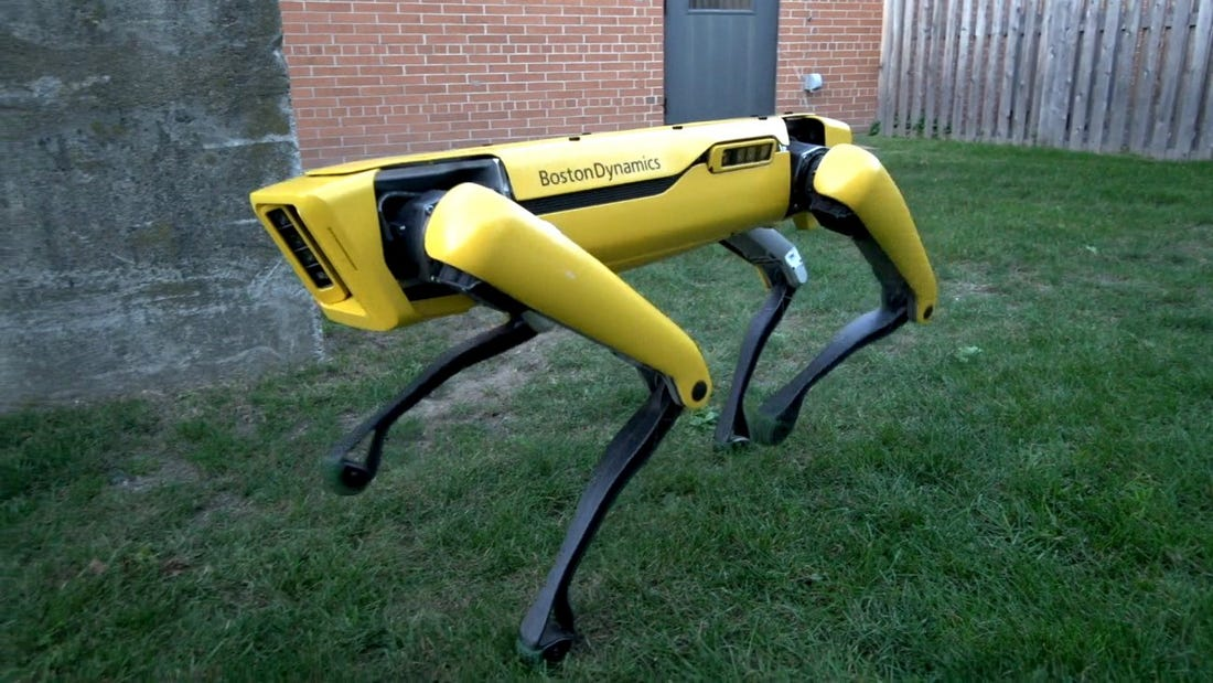 Robot dog Boston dynamics